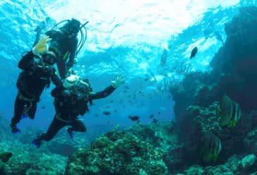 Finansiering af dykkerkursus